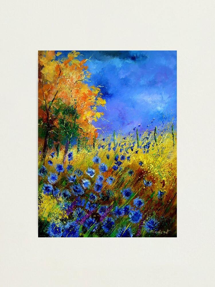 Alternate view of Blue cornflowers and orangetree Photographic Print