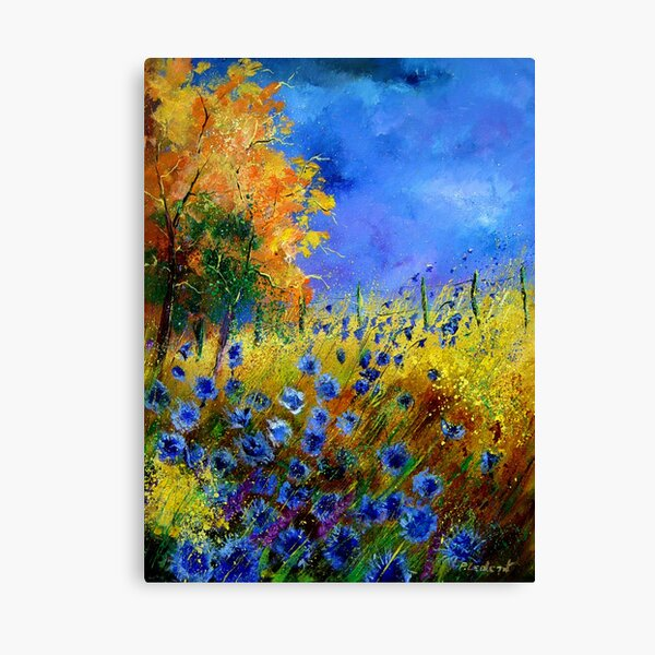 Blue cornflowers and orangetree Canvas Print