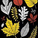 Leaves by RonanLynam