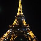 Paris at Night  by WaleskaL
