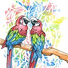 Macaws by Caitlin Rausch