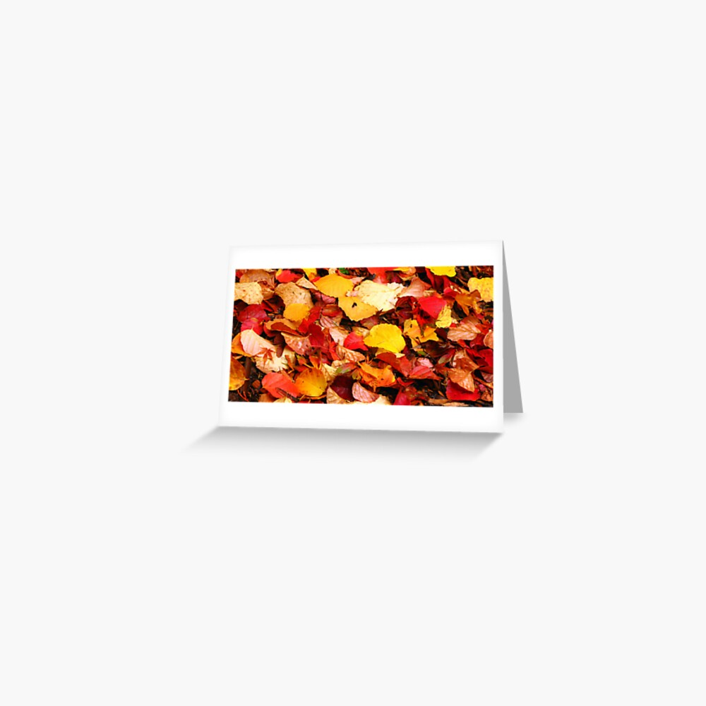 Fallen Colours Greeting Card