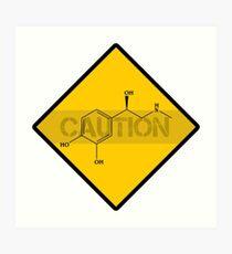 Chemistry Caution Signs Adrenaline Art Print