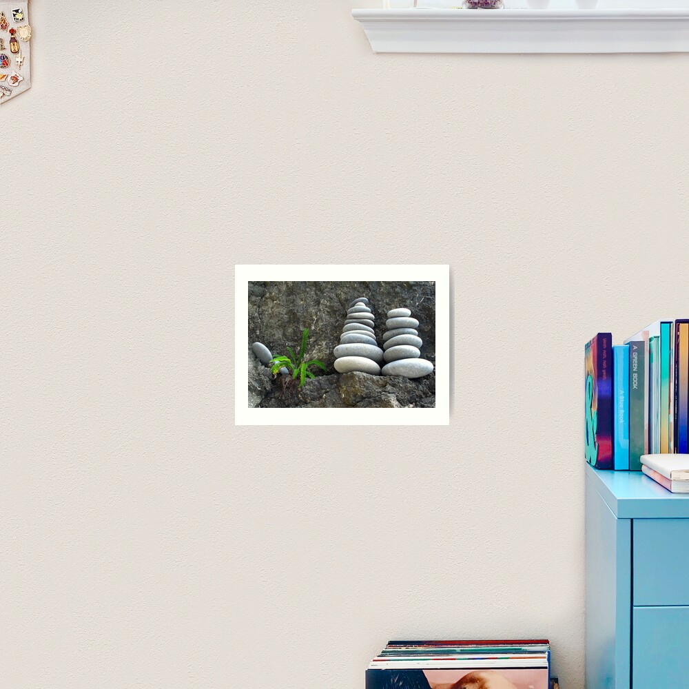 Fern Pebbles Art Print