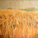 Barley Fields, Ledston, England. £800 SOLD by alanpeach