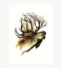 Mountain Spirit Art Print