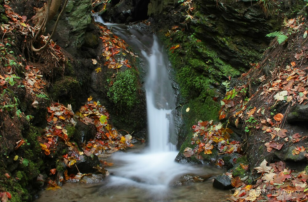 Colors of Autumn - Waterfall by Stefan Trenker