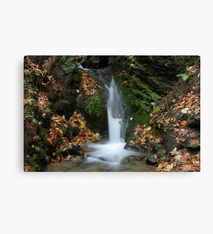 Colors of Autumn - Waterfall Canvas Print