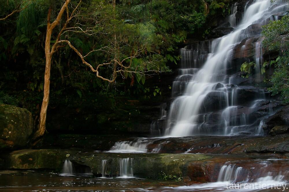 Somersby Falls by Lauren  Tierney