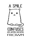 A Smile Confuses An Approaching Frown - Smiling Cat by jitterfly