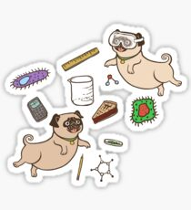 STEM Pugs Sticker
