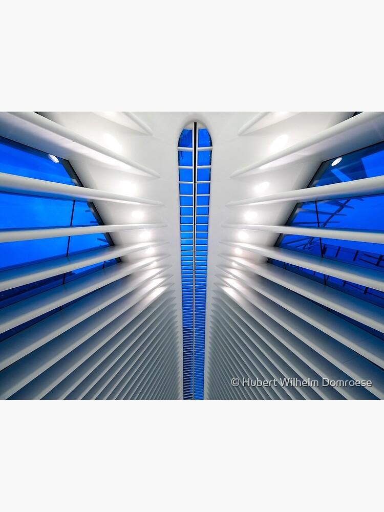 Detalle del Hub de Transporte del World Trade Center, Oculus, por el arquitecto Santiago Calatrava   Nueva York, NY de HWD-Foto