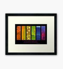 Natural Splendors I Framed Print