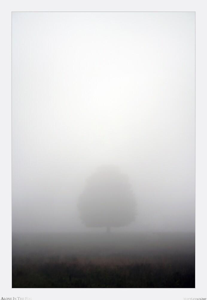 Alone In The Fog by Matt Levack