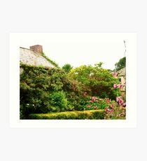 Cottage Garden, Donegal, Ireland Art Print
