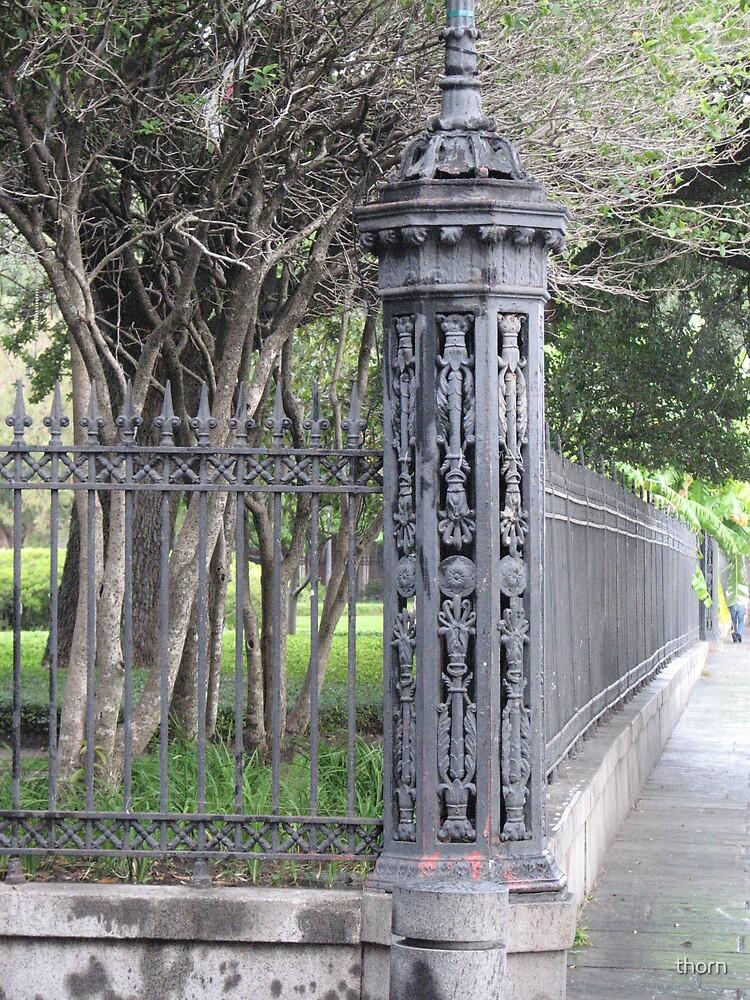 Jackson Park by thorn
