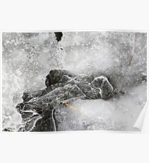 Winter Ice 1 Poster