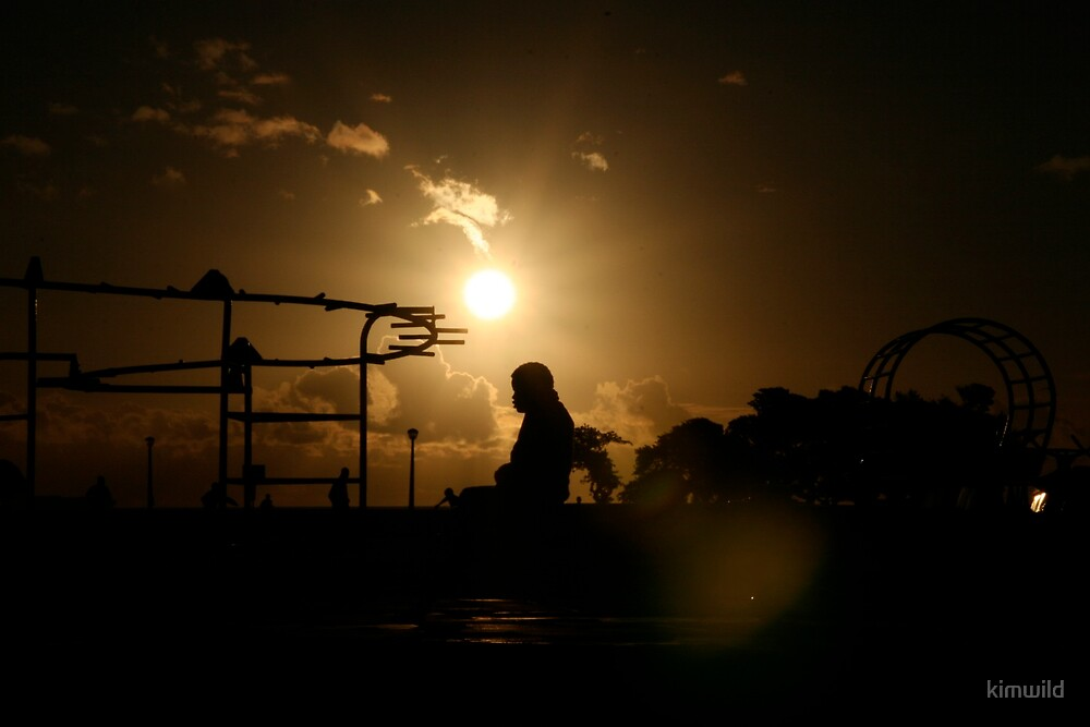 Woman Silhouette on merry-go-round by kimwild