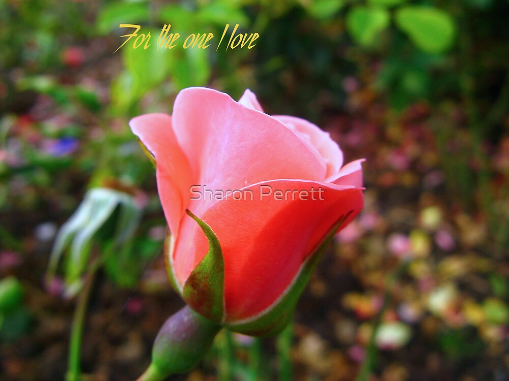 For the one I love - 2 by Sharon Perrett