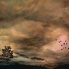 Requiem by Scott Mitchell
