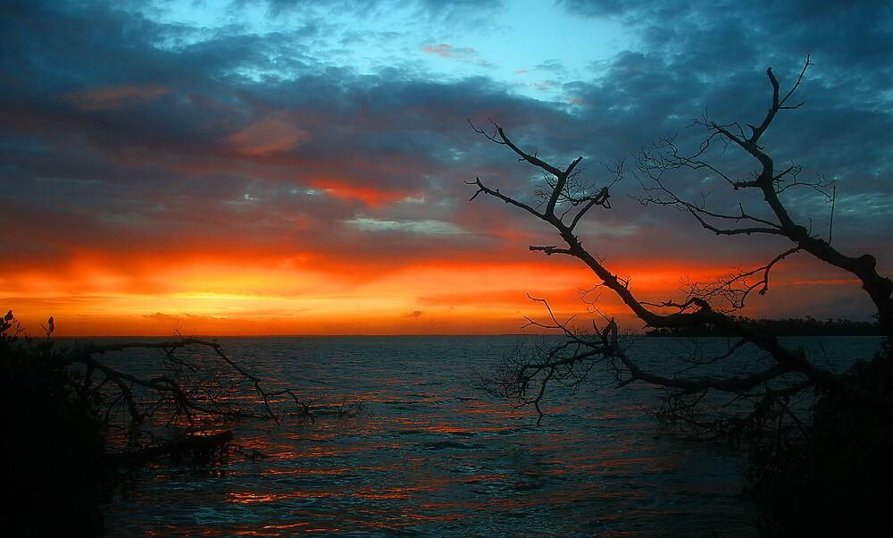Island sunrise by Martyn Starkey