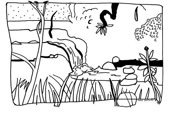 Millaa Millaa Falls by John Douglas