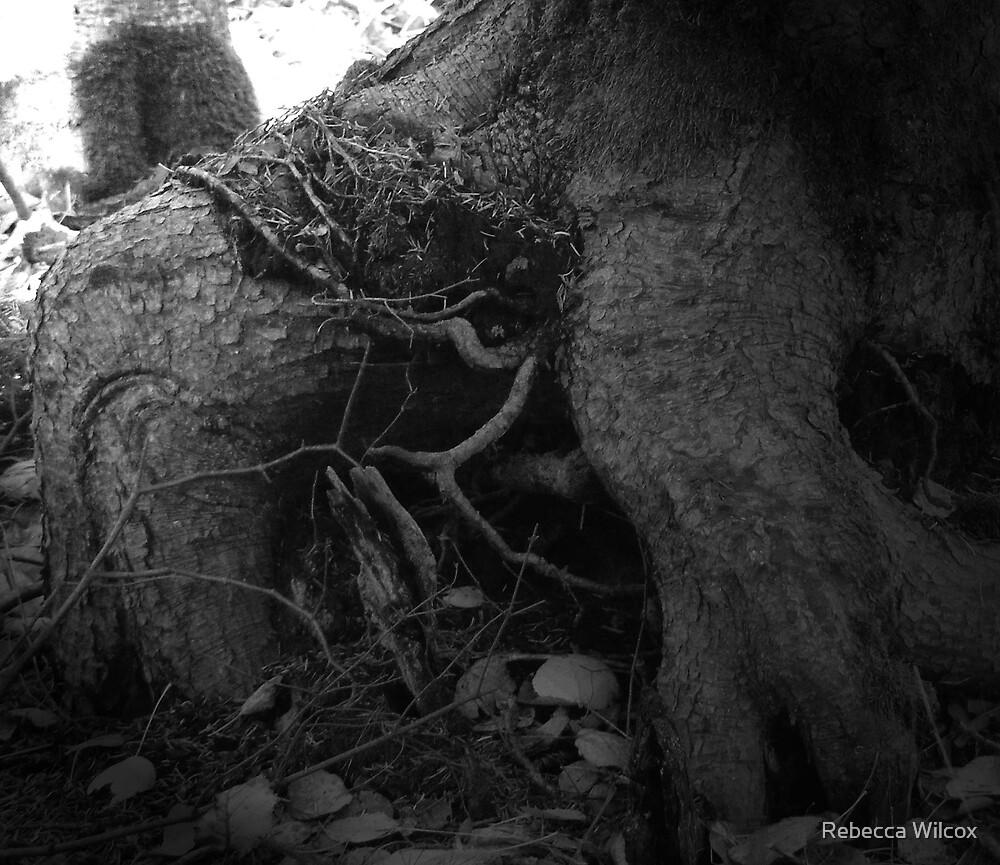 Mystical by Rebecca Brann