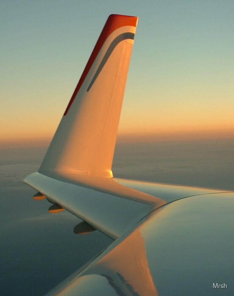 Flights of Fancy 2 by Mrsh