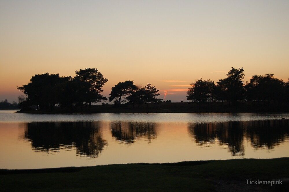Sunset over the New Forest by Ticklemepink