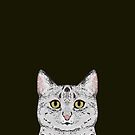 Cameron - Egyptian Mau cat gifts. cat owner gifts. perfect cat themed gift ideas by PetFriendly