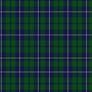 02454 Douglas, Green (Wilsons) Clan/Family Tartan  by Detnecs2013