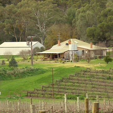 Home among the vines by Martinbryce