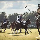Polo Match Villages in Florida by Tom Causley