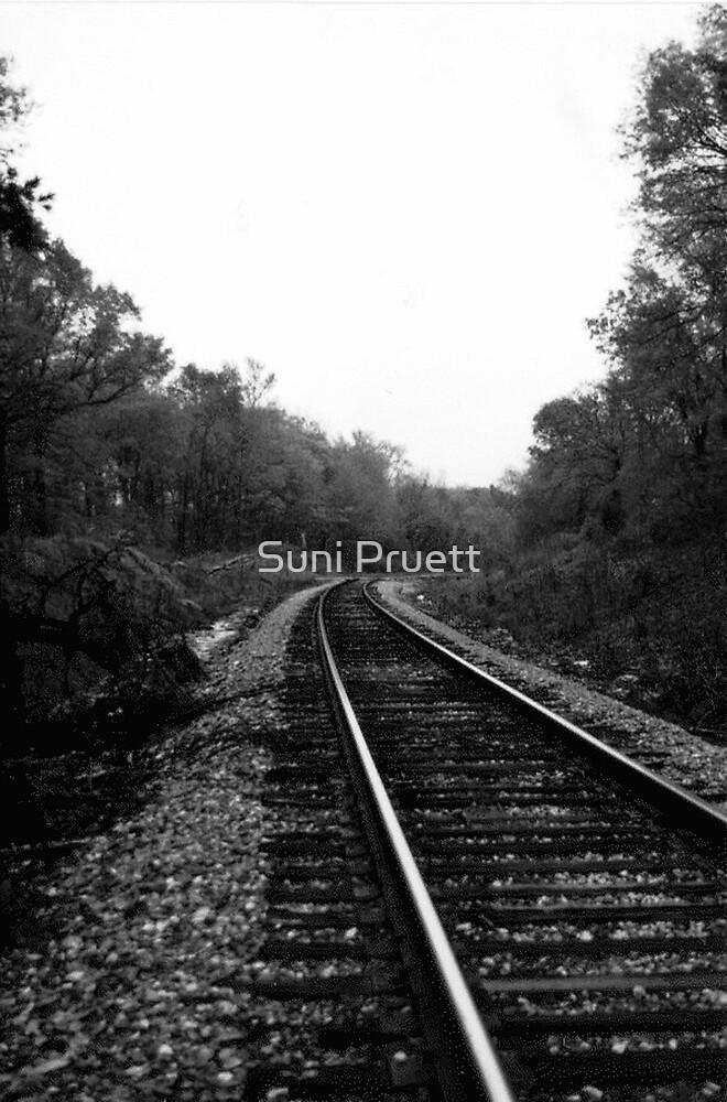 Along The Tracks by Suni Pruett