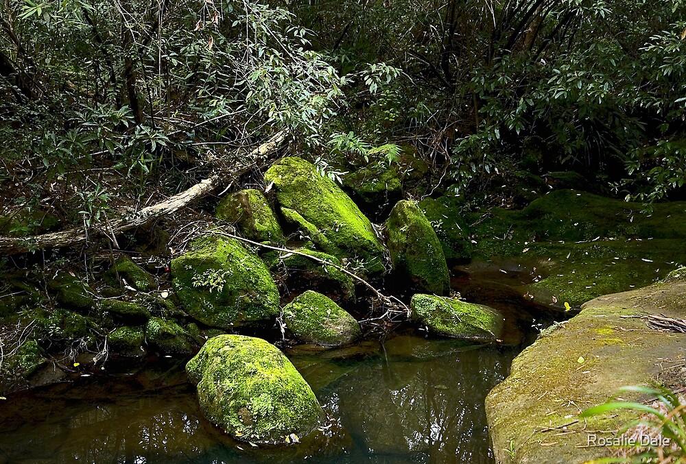 Mossy rocks by Rosalie Dale