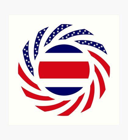 Costa Rican American Multinational Patriot Flag Series Art Print