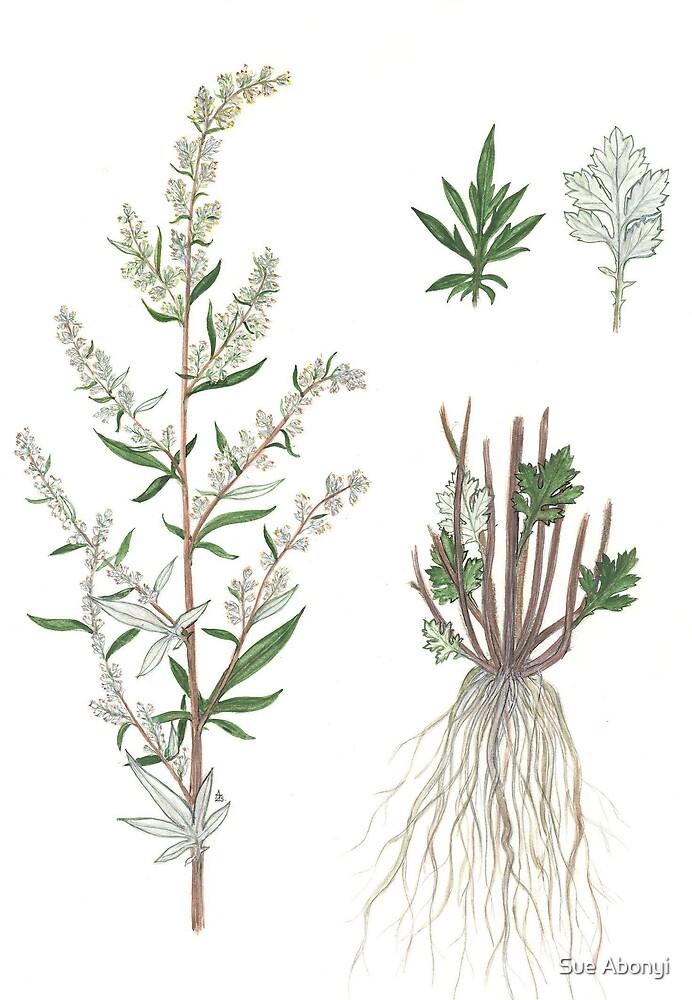 Chernobyl - Artemisia vulgaris by Sue Abonyi