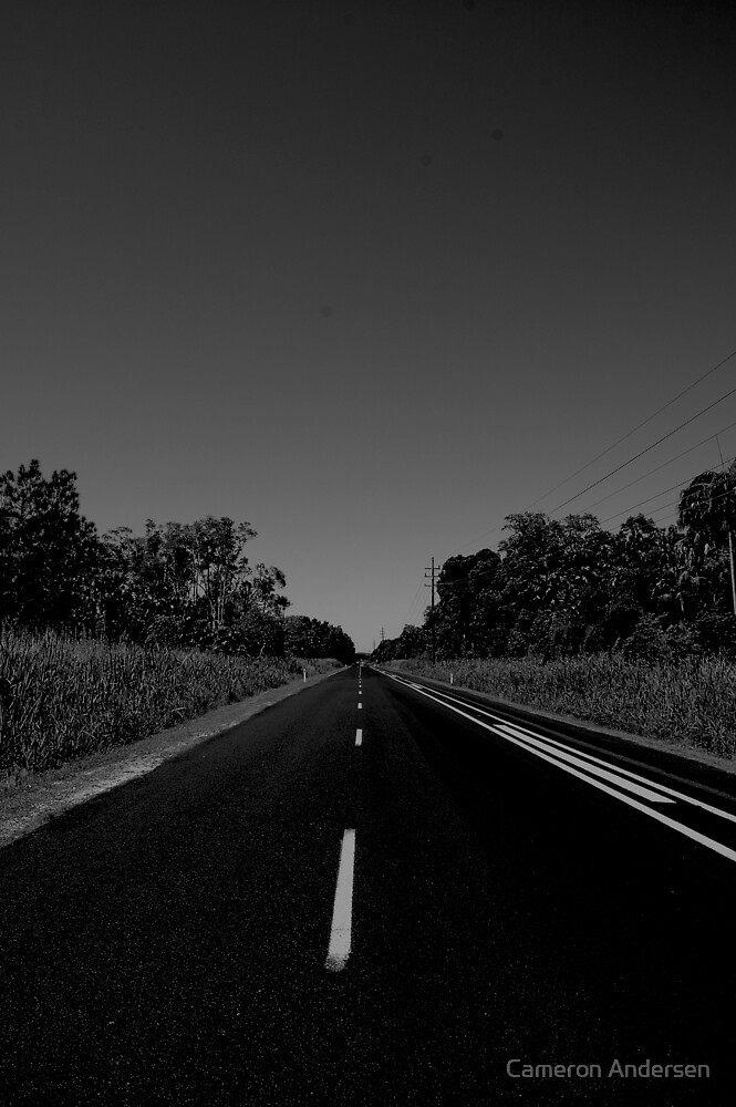White Line Fever. by Cameron Andersen