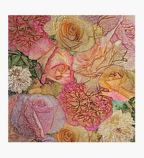 A Field Of Roses - Colored Pencil & Golden Highlights Photographic Print