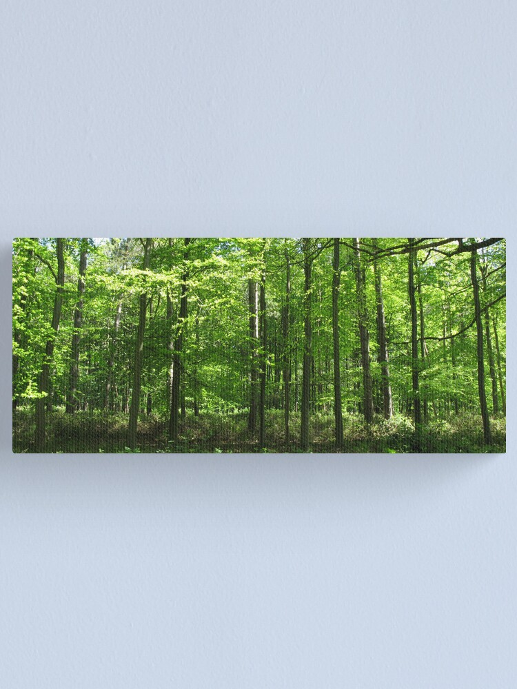Alternate view of Forest Green Canvas Print