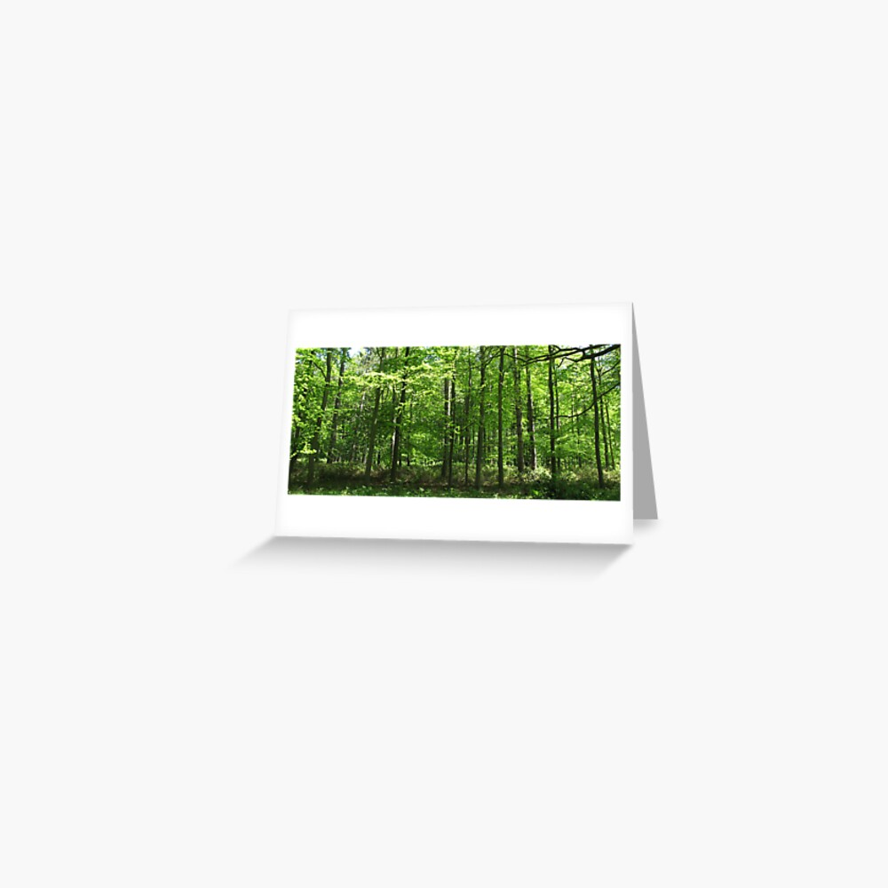 Forest Green Greeting Card