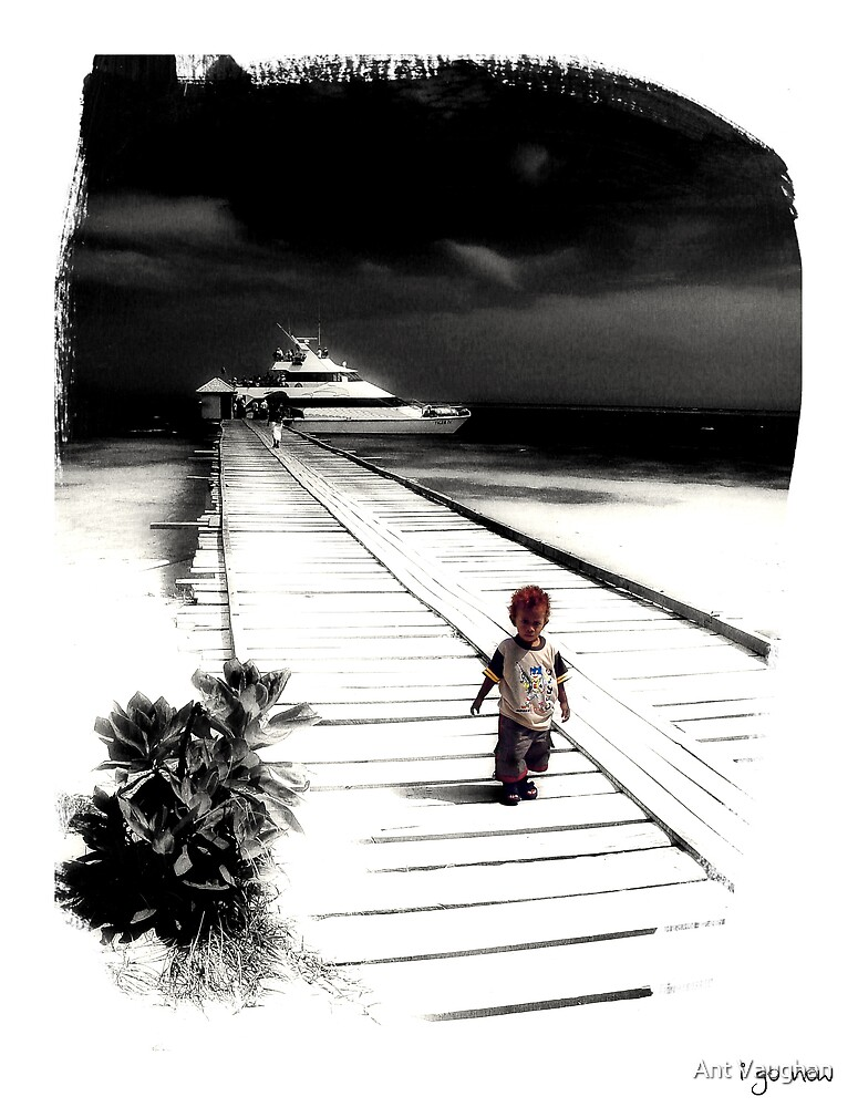 I go now... by Ant Vaughan