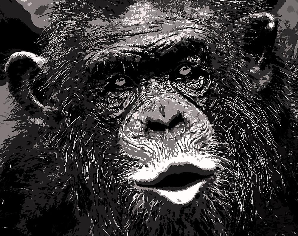Venerable Chimp by kitlew