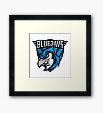 Blue Jays Toronto MLB Framed Print