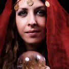 The fortune teller by Robyn Lakeman