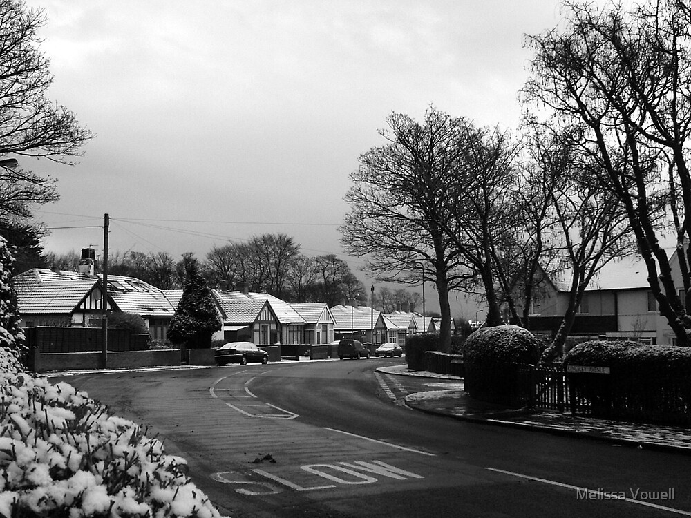 Kingsley Avenue, Hartlepool by Melissa Vowell