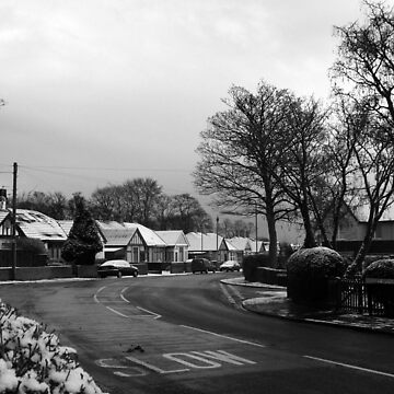 Kingsley Avenue, Hartlepool by MelissaVowell