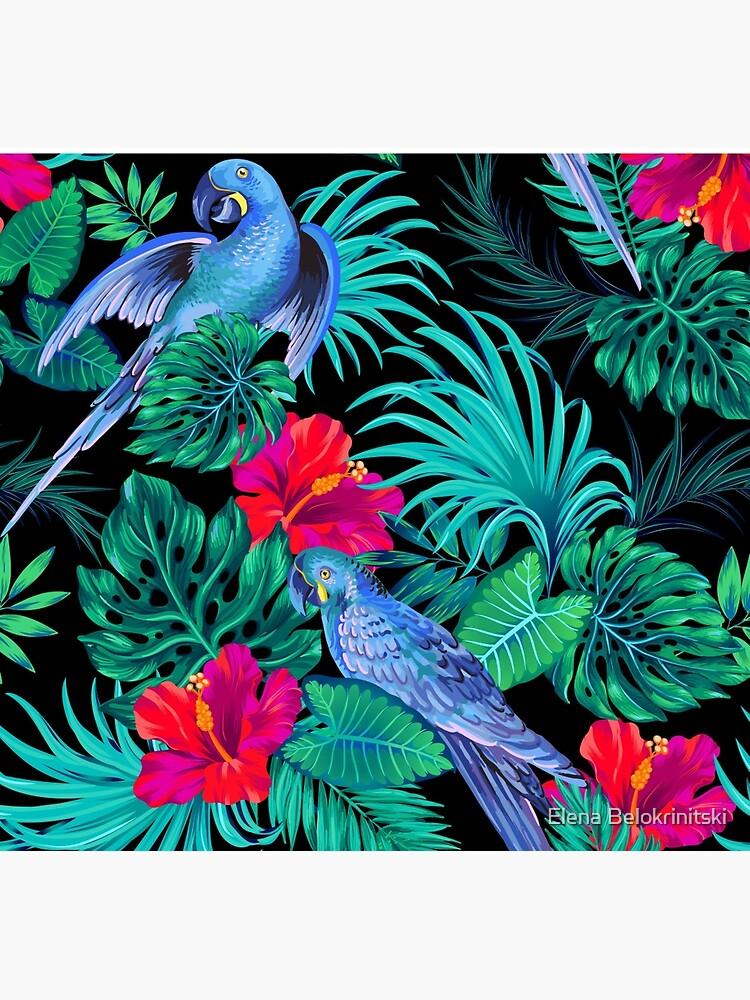 blaue Macaw Papageien. von belokrinitski