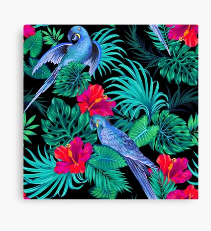 blue macaw parrots.  Canvas Print