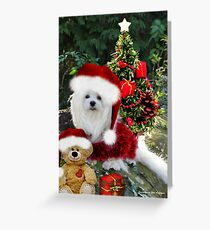 Snowdrop the Maltese & Little Ted Greeting Card